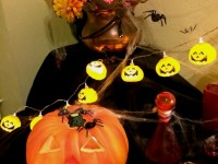 artiste-halloween-animation-soiree-horreur-sorciere-citrouille-maquillage-france-stand-atelier-maquilleuse-deco